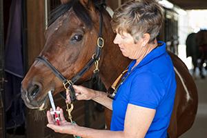 Dial-A-Dose und Posi-Dose Tiergesundheitsspritzen liefern eine wiederholgenaue Dosierung.