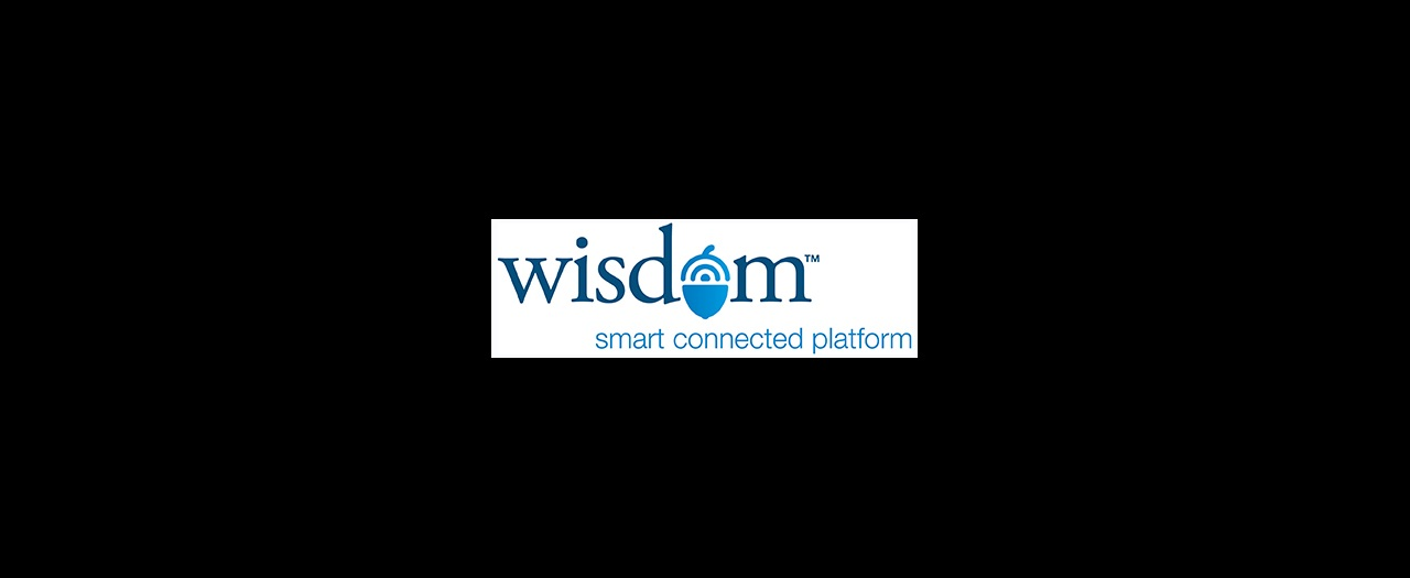 Wisdom Logo Email